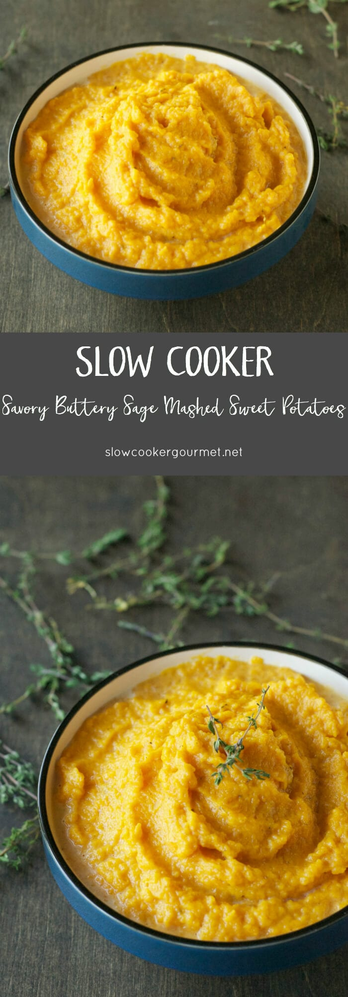 scg-savory-buttery-sage-mashed-sweet-potatoes-longpins
